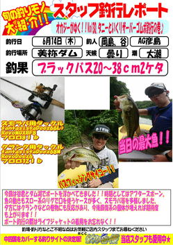 blog-20180614-hikoshima-bass.jpg