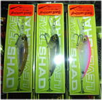 news-20150313-honten-level shad.jpg